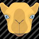 animal, animal face, brown llama, llama face, smiling llama icon