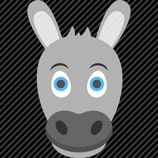 baby donkey, domestic animal, donkey face, foal face, smiling donkey icon