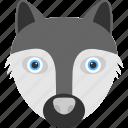 animal, animal face, bearded racoon, black racoon, racoon face icon