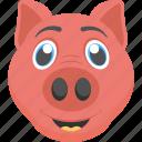 animal face, baby pig, cute pet, cute piglet, piglet face