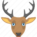 animal, animal face, brown reindeer, large horns, reindeer face icon
