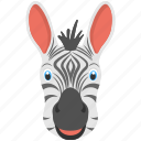 animal face, black white stripes, long ears, mammals, zebra face icon