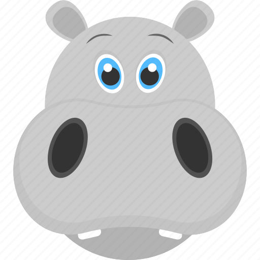 Baby hippo, baby hippo face, grey face, grey hippo, mammal ...