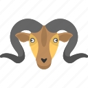 curled horns, goat face, large horns, mountain animal, mountain goat icon