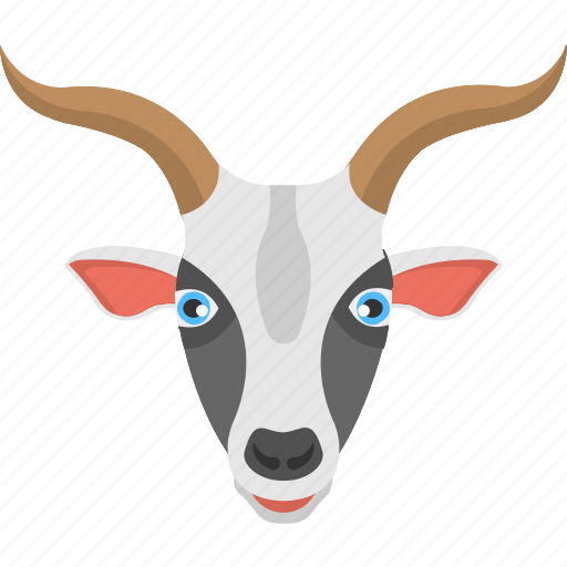 goat face, long horns, mountain goat, white goat, wild animal icon