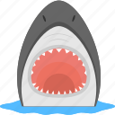 dangerous animal, sea creature, shark face, sharp teeth, water icon