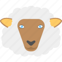 animal, domestic animal, sheep face, sheep wool, white sheep icon