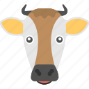 animal, brown cow, cow face, domestic animal, long face icon
