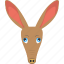animated kangaroo, brown kangaroo, kangaroo face, long face, wild animal icon