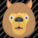 fat lion, furry lion, lion face, smiling lion, wild animal icon
