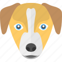 animal, dog face, long face, puppy, puppy face icon