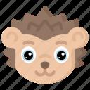 animal, animals, avatars, hedgehog, nature, wildlife