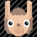 animal, animals, avatars, llama, nature, wildlife icon
