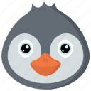 animal, animals, avatars, nature, penguin, wildlife icon