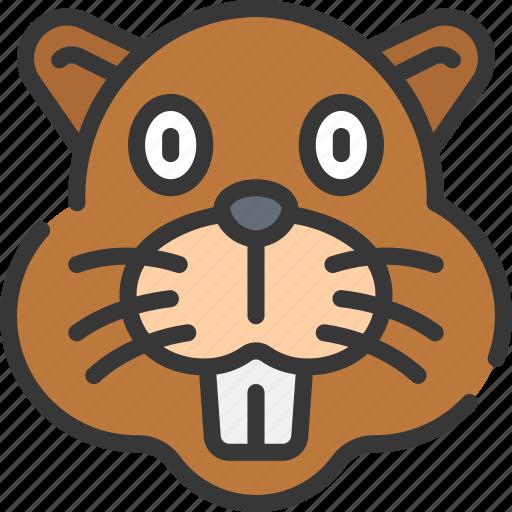 Animal, animals, avatars, beaver, nature, wildlife icon - Download on Iconfinder