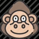 animal, animals, avatars, gorilla, nature, wildlife