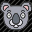 animal, animals, avatars, koala, nature, wildlife