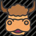 animal, animals, avatars, nature, wildlife, yak