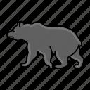 animal, bear, bearzoo, grizzly, wildlife