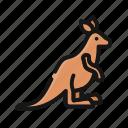 animal, australia, jump, kangaroo, mammal, punch