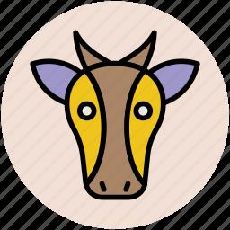 animal, cartoon cow, cow, cow face, mammal icon