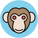 animal, cartoon monkey, monkey avatar, monkey face icon