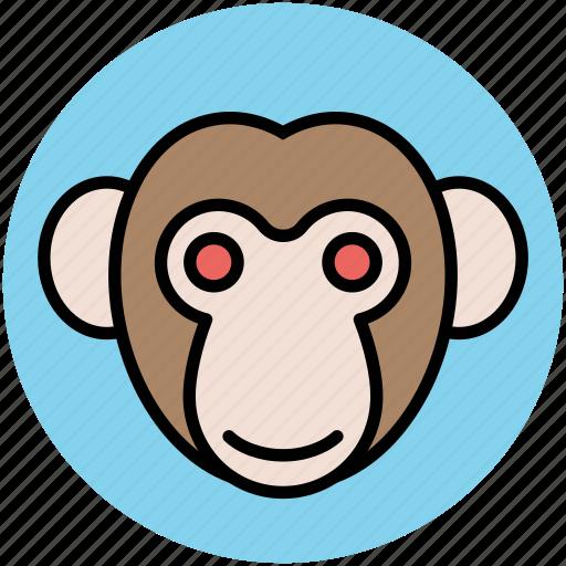 animal, cartoon monkey, monkey avatar, monkey face icon