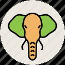 elephant, elephant face, mammal, pachyderm icon