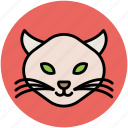 cartoon cat, cat, cat expressions, cat face, fun, wild cat icon