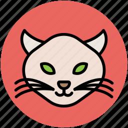 cartoon cat, cat, cat expressions, cat face, fun, wild cat icon