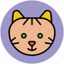 abyssinian, cartoon animal face, cat, coon, feline icon
