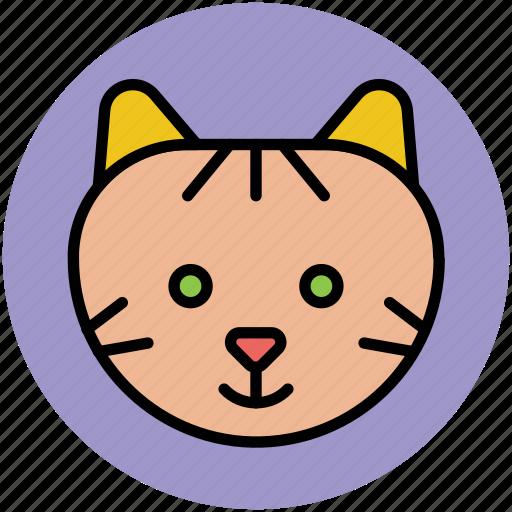 abyssinian, cartoon animal face, cat, coon, feline icon