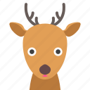 deer, face icon