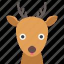 deer, face
