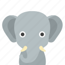 elephant, face icon