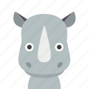 face, rhino, rhinoceros