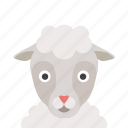 face, sheep icon