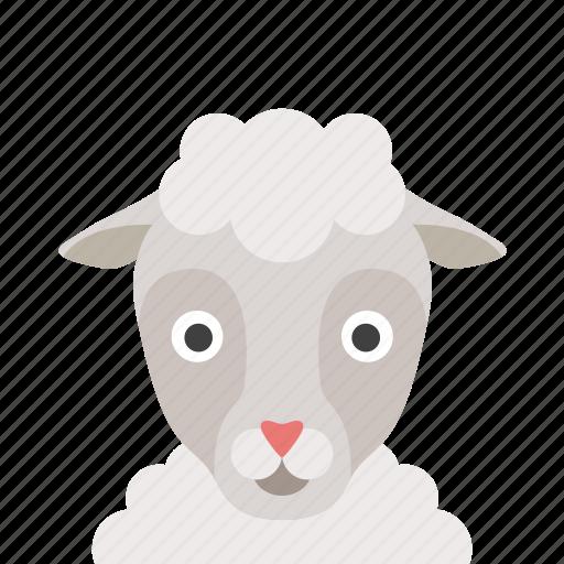 face, sheep icon