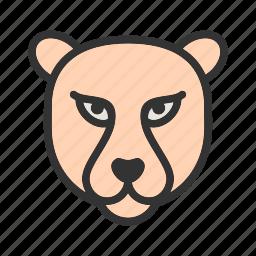 africa, animal, cheetah, fast, kenya, safari, wildlife icon