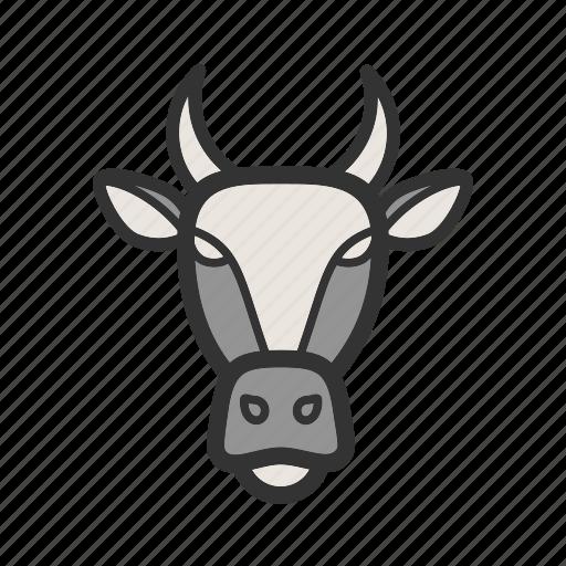 cows, face, farm, field, grass, milk, rural icon