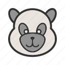 animal, bamboo, cute, mammal, panda, snow, wildlife icon