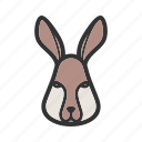 cute, face, grass, jump, jungle, rabbit, white icon