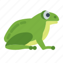 animals, face, frog, green, nature, pet, water icon