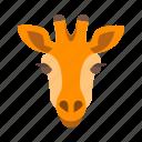 animals, face, giraffe, mammal, safari, wild, wildlife icon