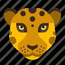 big, cat, fast, jungle, leopard, lion, puma icon
