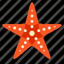 beach, fish, marine, starfish, travel, trip, vacation icon