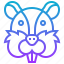 animal, chipmunk, squirrel, treeshrew, zoo icon