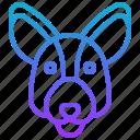 animal, australia, kangaroo, marsupial, pouch icon