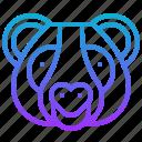 animal, bear, chinese, mamal, panda icon
