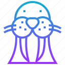 animal, artic, marine, seal, walrus icon